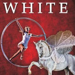 WHITE TEATRO EQUESTRE